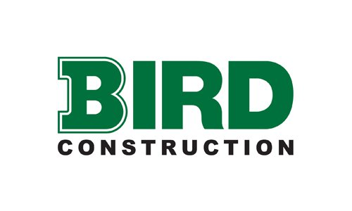 bird-constuction
